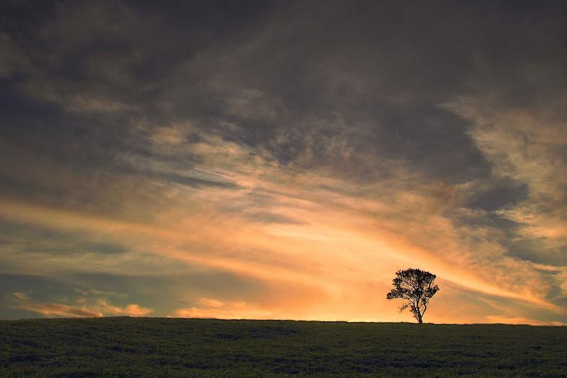 da solo.... ad ammirare il cielo di rino_savastano