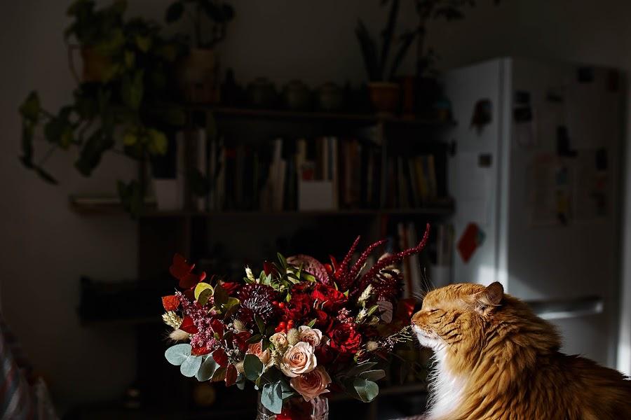 Wedding photographer Aleksandra Boeva (boeva). Photo of 31.10.2019