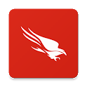 CrowdStrike Falcon icon