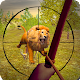 Download Archery Jungle Hunting 3D For PC Windows and Mac