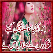 New Urdu 2 Line Poetry