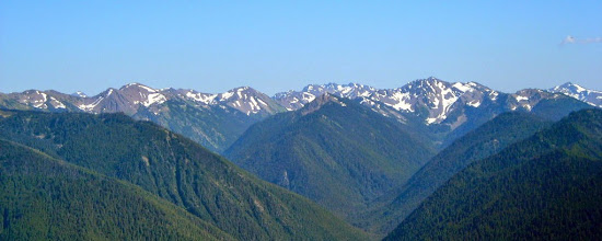 Photo: Some of the Olympic Mountains, from Hurricane Ridge, Olympic National Park.