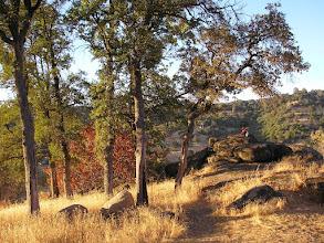 Photo: Yoga Farm, Grass Valley, CA - fall colors