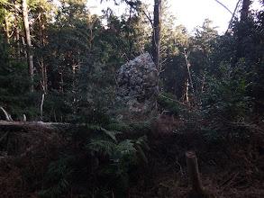 くびら岩の上部