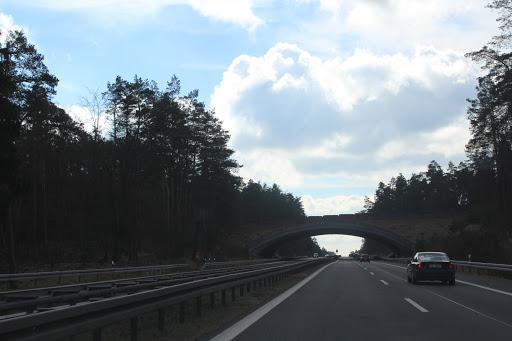 Auch mehrere Wildbrücken überqueeren die BAB 11 - zum Öffnen der Fotostrecke mit den Bildern alle Brückenbauwerke über die BAB 11 zwischen Penkun und dem Berliner Ring auf das Bild klicken - Fotos A.M.)