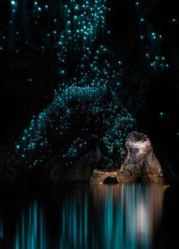 Glowworms Caves, a caverna do céu estrelado