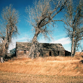 Abandoned Farmhouse by James Oviatt - Buildings & Architecture Decaying & Abandoned