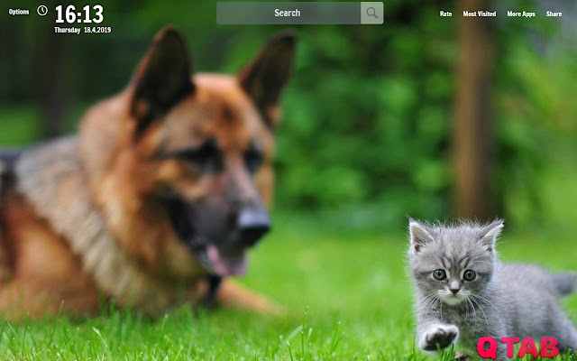 Cats and Dogs New Tab Wallpapers