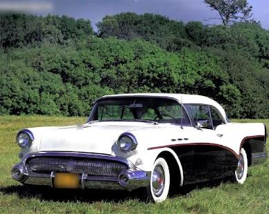 Themes Buick Century - náhled