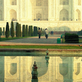 The Taj by Björn Olsson - Buildings & Architecture Public & Historical ( taj mahal, india )