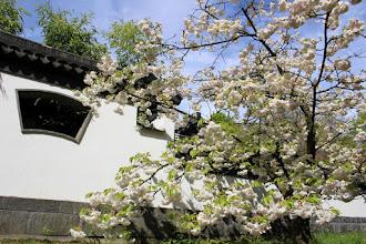 Photo: Botanischer Garten Bochum (Ruhr Uni)