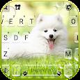 White Cute Puppy Keyboard Background