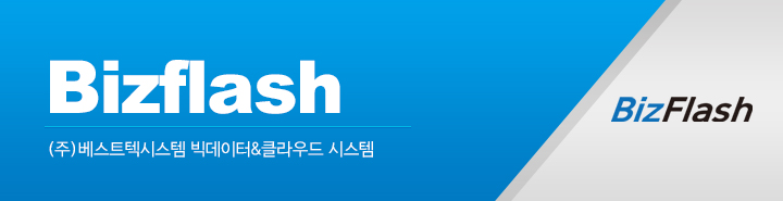 Bizflash Logo