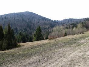 Photo: 06.Po lewej Gorc Kamienicki (1160 m).