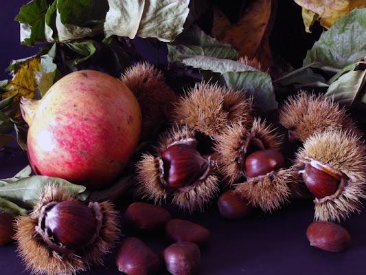 Frutti d'Autunno di Borla8