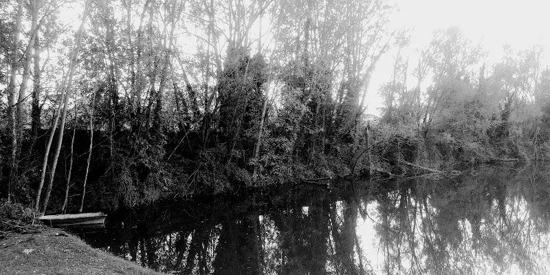 Lago nella nebbia di FabriTrofa