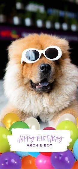 Archie's 4th Birthday - Snapchat Geofilter item