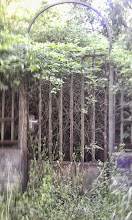 Photo: Entrance of a long time ago abandoned property (sorry for the quality)