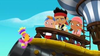 Captain Hook's Parrot / SkyBird Island is Falling!