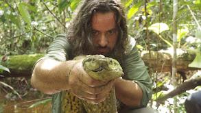 Amazon River Beast thumbnail
