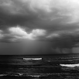 by Tadeia Fedor - Black & White Landscapes (  )