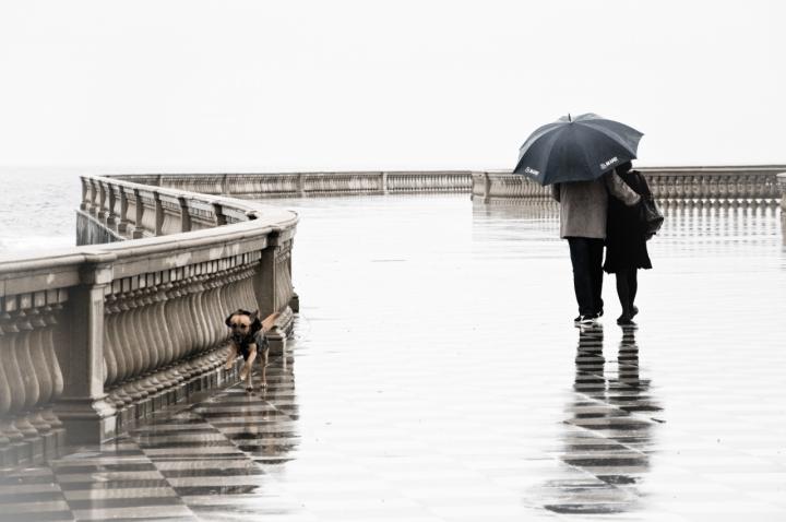 Have You Ever Seen The Rain? di lalla68