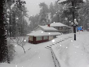 Photo: Hamalian's Hut
