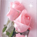 Pretty Pink Roses Live Wallpap icon