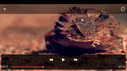 HD Player 1.6 screenshots 8