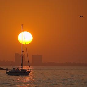 Nasce o Sol sobre Tróia. by Eugénio Buchinho - Landscapes Sunsets & Sunrises