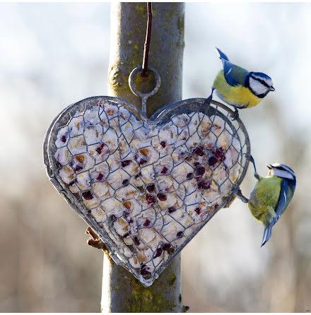 Hjärta i hönsnät, platt baksida ELDgarden
