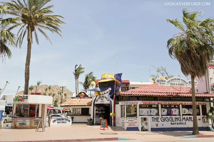 Partying at Giggling Marlin (21 Things to Do in Cabo San Lucas + 1 You Should Never Do).