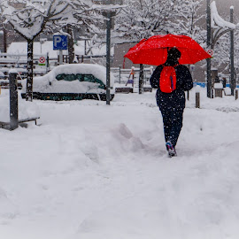 red umbrella in the snow by Ana Paula Filipe - City,  Street & Park  Street Scenes ( red, umbrella, street, snow, walk )