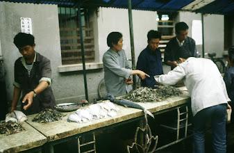 Photo: 10975 上海/自由市場/魚