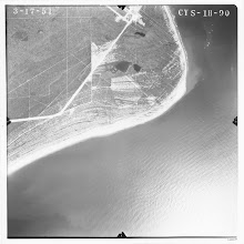 Photo: A 1951 photo of the area, showing the ponds. Vegetation periodically burns off and you can see some of the the old beach ridges marked by denser vegetation. Our OSL dates from cores in the pond all are less than 300 years old, indicating it is a very late formation in the cape's evolution.