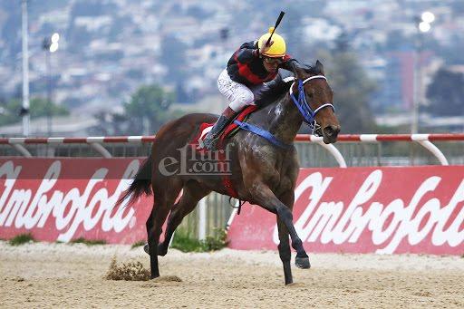Tierra Salvaje (Grand Daddy) se lleva el Clásico Ejército De Chile (1400m-Arena-VSC). - Staff ElTurf.com