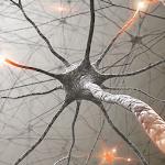 Neurons Icon