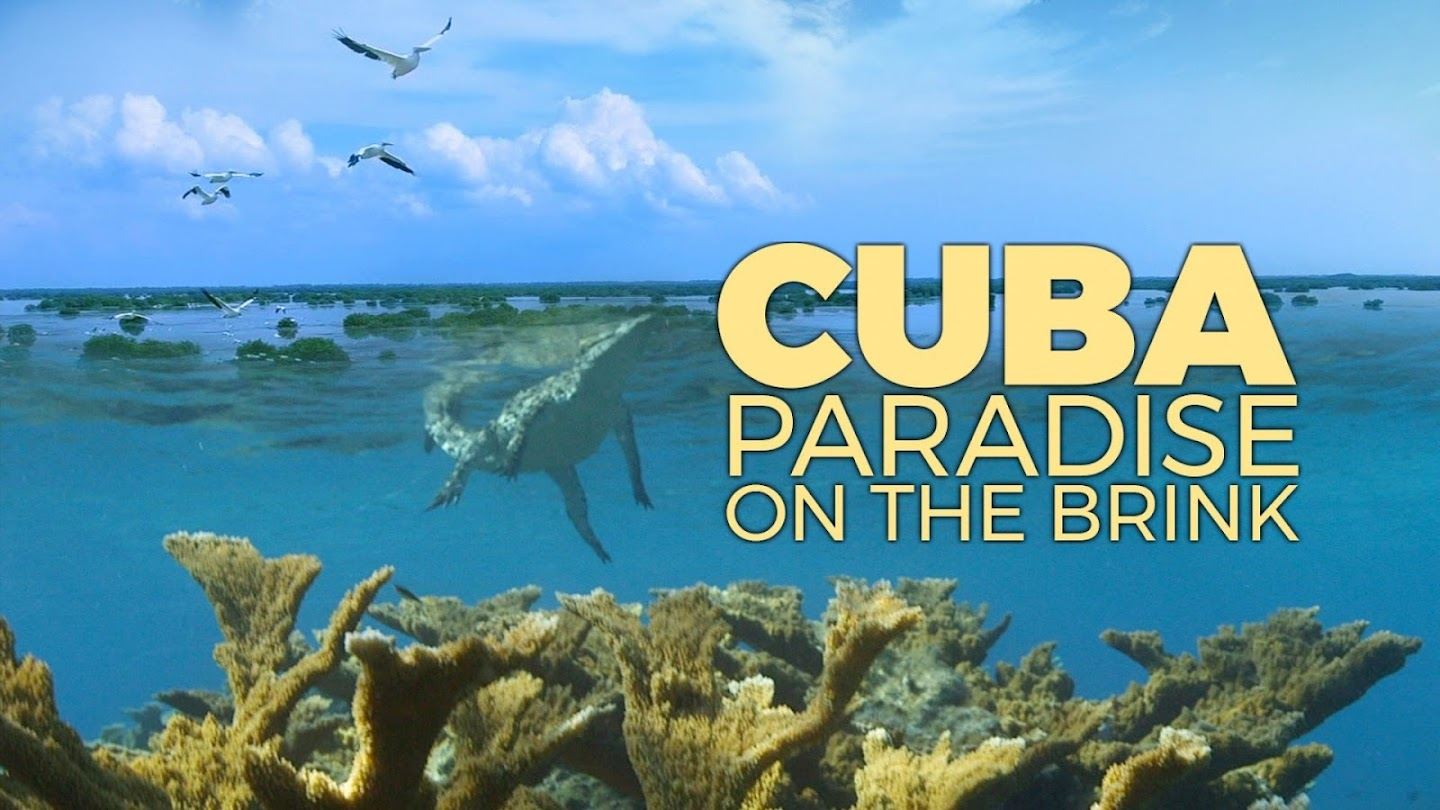 Watch Cuba, A Paradise on the Brink live