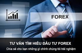 Kinh nghiệm đầu tư Forex cho người mới