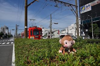Photo: ちんちん電車