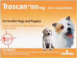 Chanelle Troscan - 100mg, 6 Tablets, Film Coated