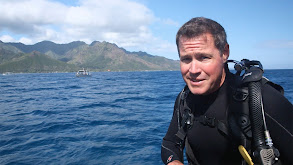Hawaii Shark Encounter thumbnail