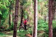 Ужанский национальный парк