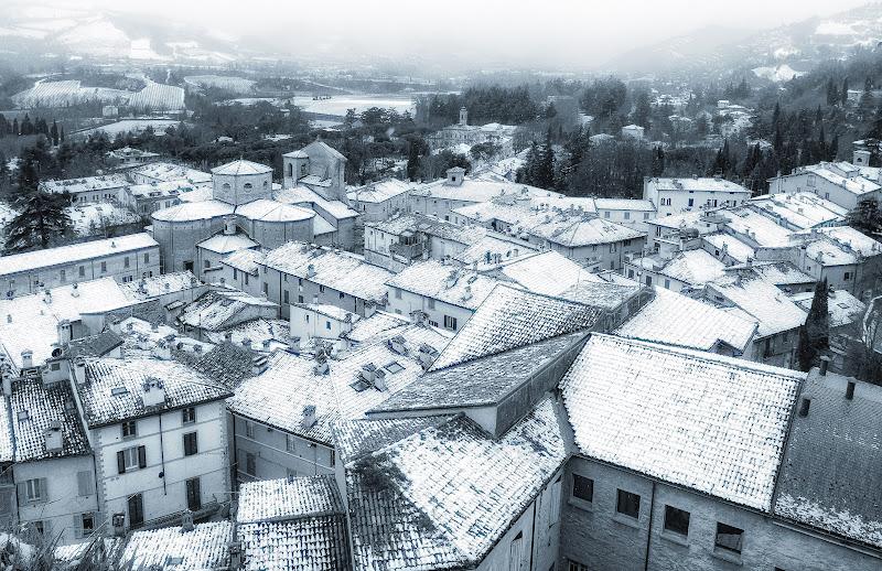 sotto la neve di elitropia