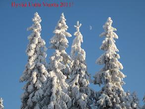 Photo: Lähellä Kuopiota puolen päivän kirkkaassa auringonvalossa lumi on valkoisimmillaan..