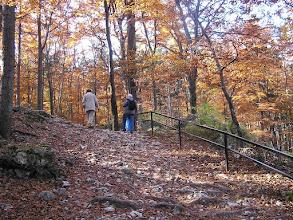 Photo: BB040362 Ojcow - kolory jesieni