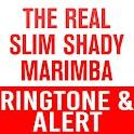 The Real Slim Shady Marimba icon