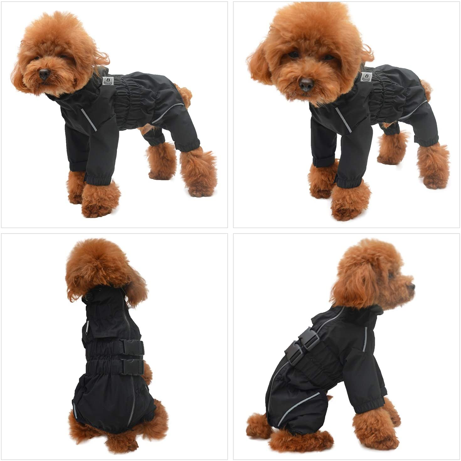 Dog in black snowsuit | Products for winter dogs