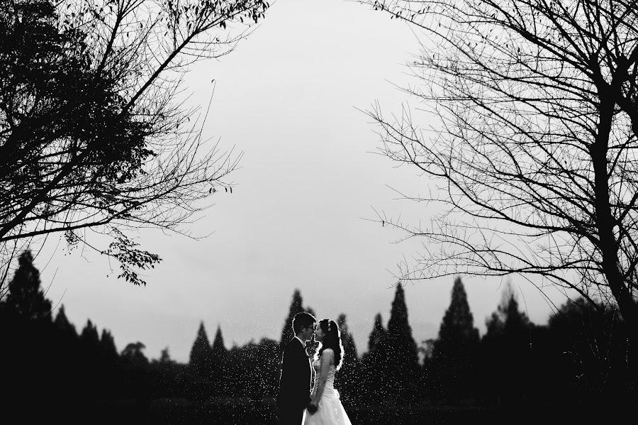 Wedding photographer Xiang Qi (anelare). Photo of 31.10.2016