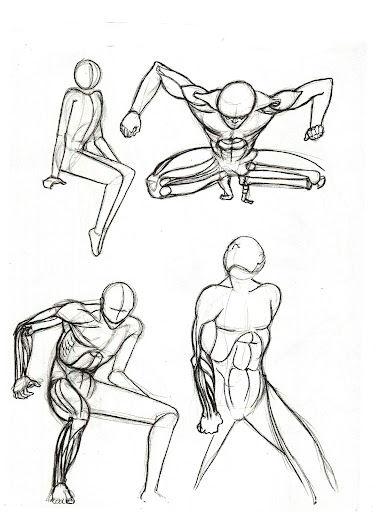Sketches of anatomy P